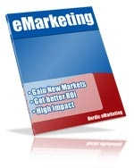 eMarketing and Search