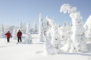 frozen finland