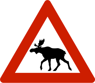 Sweden: Motorists warned about horny elks