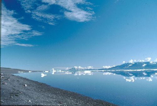 Green landscape discovered beneath Greenland ice sheet