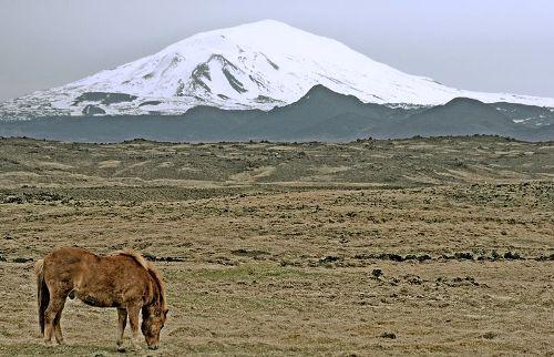 Scientists: Hekla volcano could erupt soon