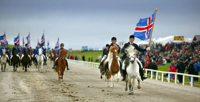 Biennial Icelandic horse show Landsmót set to tölt through Hella in June