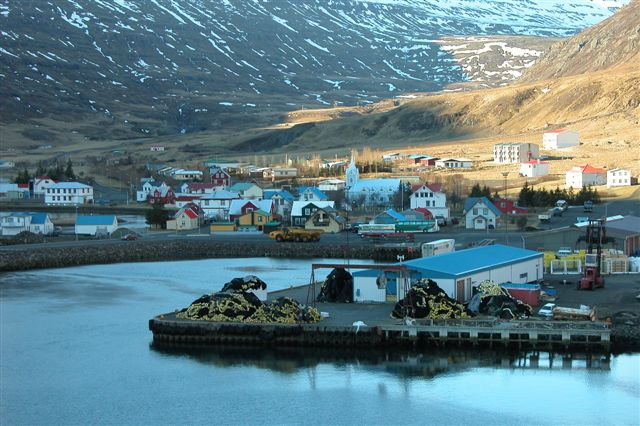 Iceland's see largest environmental accident in the country's history