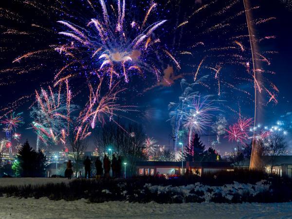 Happy 2015 from IceNews