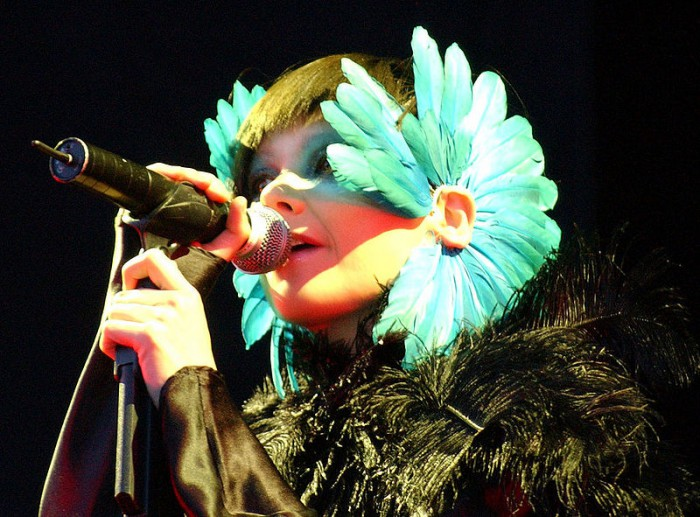 Bjork's ex files for custody of child