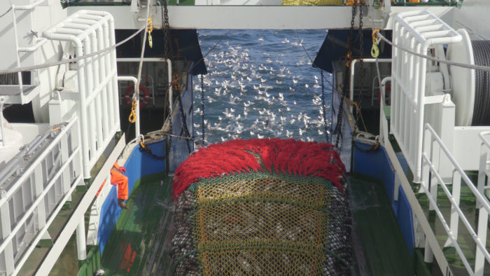 The fight against IUU fishing means monitoring vessels in real time